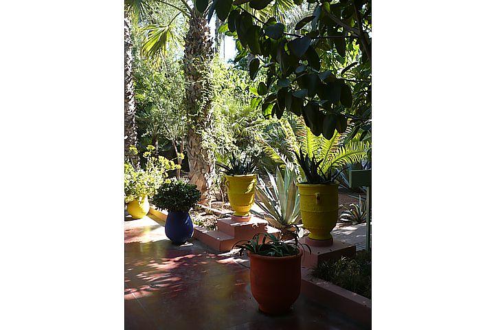 Le Jardin Majorelle - 7