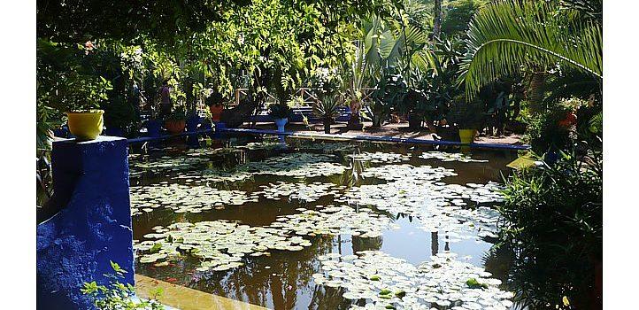 Une visite enchanteresse : Le Jardin Majorelle à Marrakech