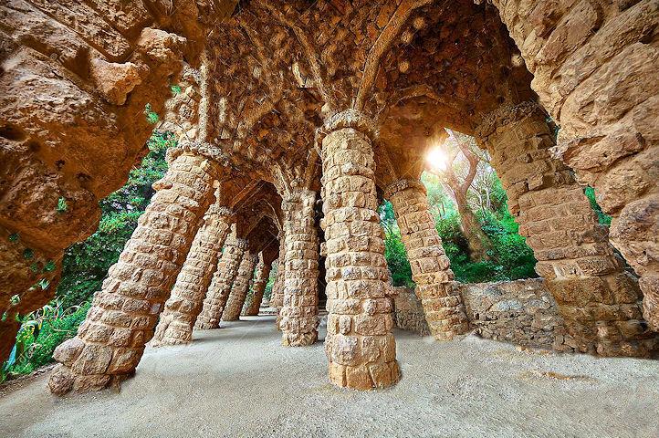 Les colonnes en forme d'arbre